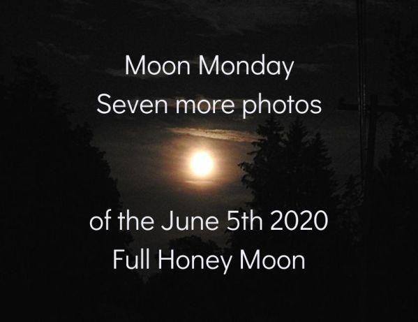 Moon Monday – seven more photos of the June 5th 2020 Full Honey Moon blog thumbnail