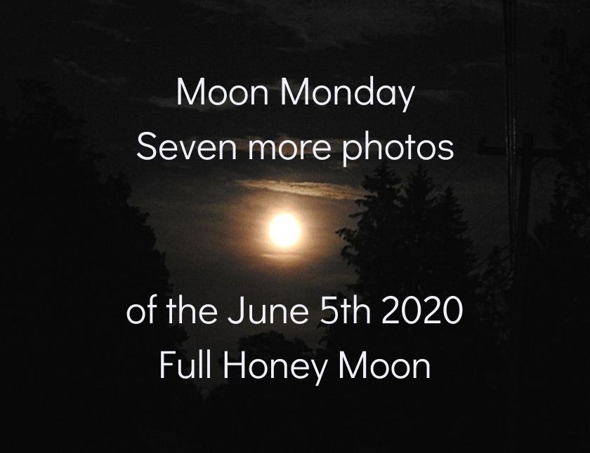 Moon Monday – seven more photos of the June 5th 2020 Full Honey Moon blog thumbnail