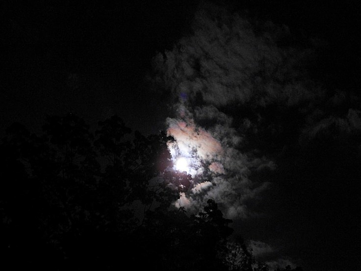 5 ten more photos of the Full Harvest Moon October