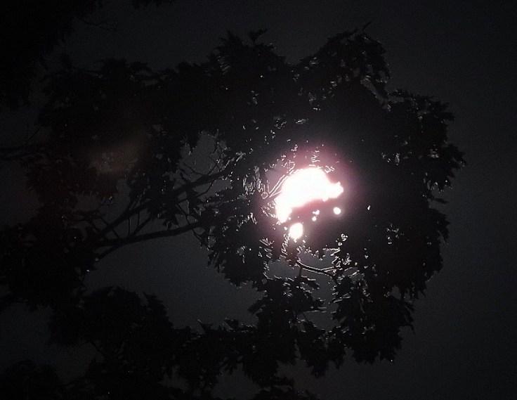 Full Harvest Moon October 1st 2020