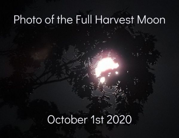 Photo of the Full Harvest Moon October 1st 2020 blog thumbnail