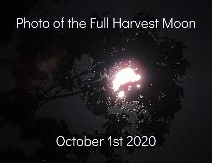 Photo of the Full Harvest Moon October 1st 2020 blog thumbnail