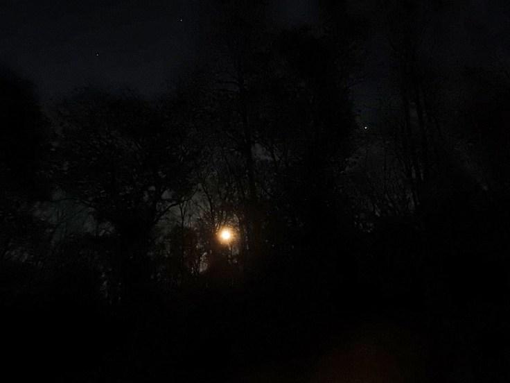 1. Halloween Blue Hunter's Moon