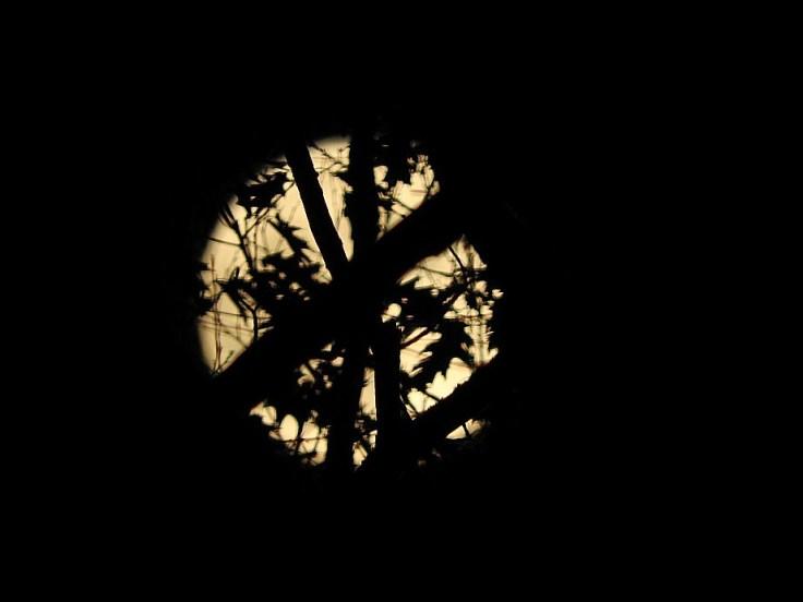 4. Halloween Blue Hunter's Moon