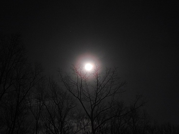 The Night before the Full Crow Moon