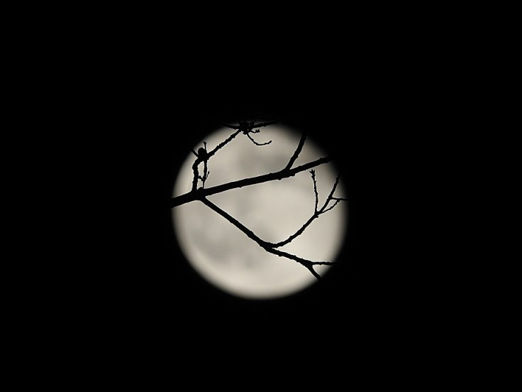 Mostly Wordless Wednesday - Two Nights after the Crow Moon