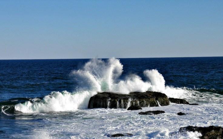 Big Wave, Gloucester MA