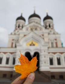 Autumn in Tallinn