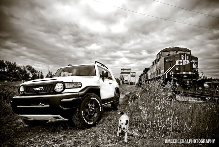 2008 toyota fj cruiser trd trail teams review. Black Bedroom Furniture Sets. Home Design Ideas