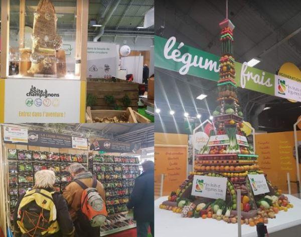Cultivo de setas, venta de semillas y la Torre Eiffel de fruta.
