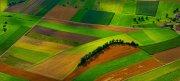 ¿Cómo hacer un cuaderno de campo Agrícola? Aquí tienes las mejores herramientas
