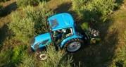 ¿Cuál es el mejor Tractor para Olivar? Comparativa de modelos