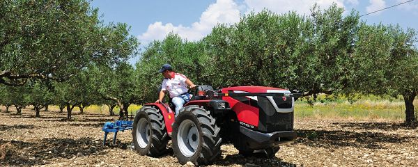 Tractor Valpadana en Olivar