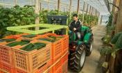 ¿Cuál es el mejor Tractor para Invernadero? Comparativa de modelos