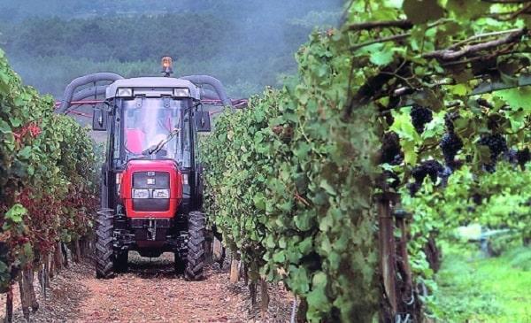 Tractor viñero aplicando fitosanitarios
