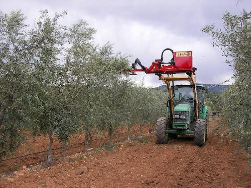 Podadora de discos para olivar superintensivo. Imagen: Industrias David