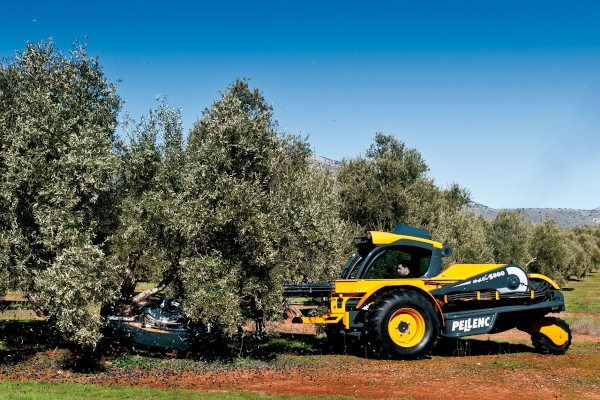 Buggy para olivar. Imagen: Pellenc