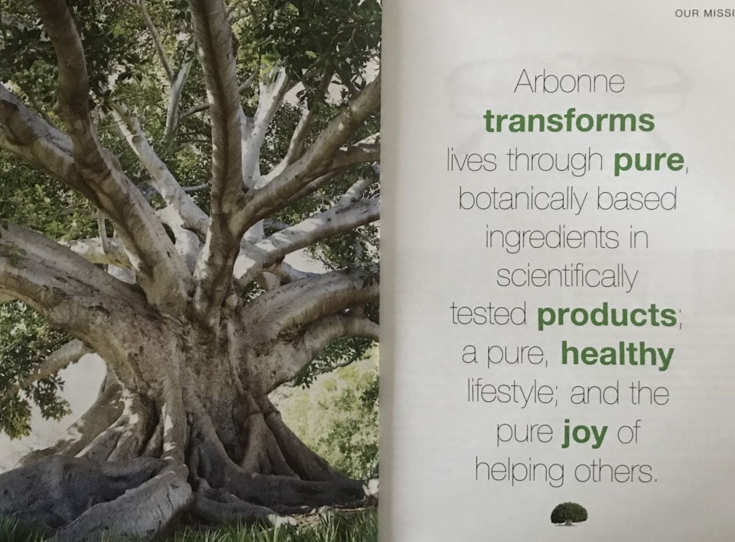 Arbonne mission statement