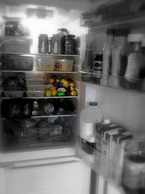 Frequently My Fridge Is Possessed By Evil Junk