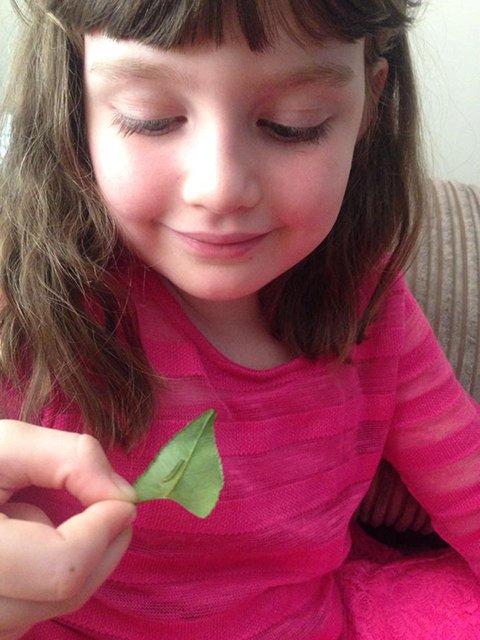 Millie Has Befriended A Little Caterpillar