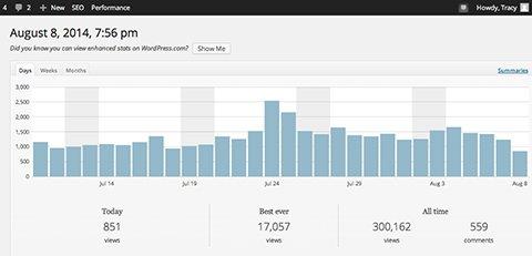 My Blog Reached 300,000 Views This Week
