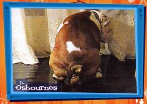 2002 Inkworks The Osbournes Case Card