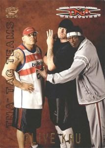 2004 Pacific TNA Tag Teams