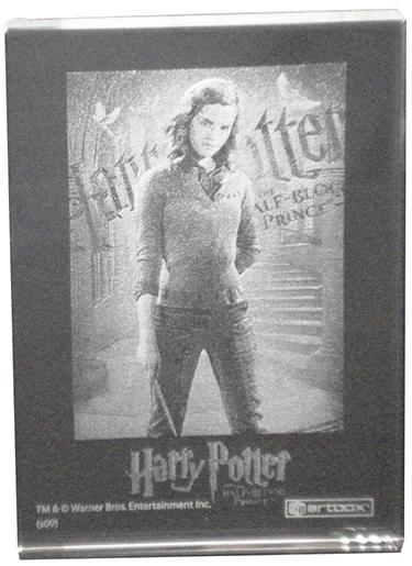 2009 Harry Potter SDCC Crystal