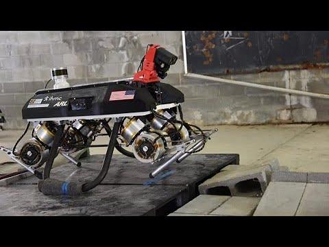 'Cão de guerra': EUA estudam novo robô para atuar em conflitos