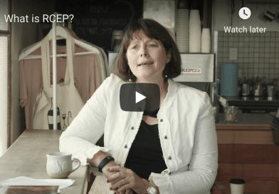 Fiona Cooper explaining RCEP