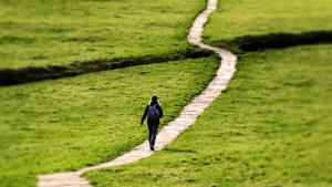 Path of the Prokopton