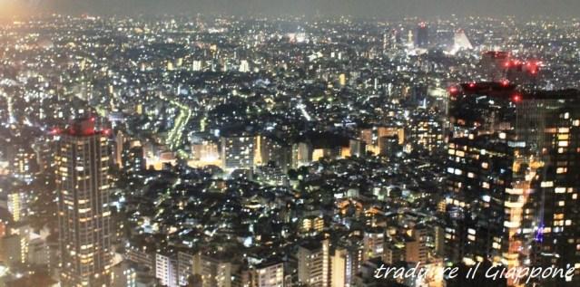 Panorama dalla torre (perdonate la pessima qualità della foto)