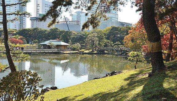 A spasso per i giardini di tokyo tradurre il giappone for Giardino hamarikyu