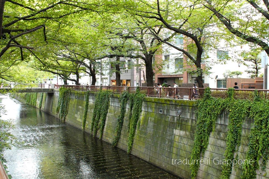 Passeggiando lungo il fiume Meguro