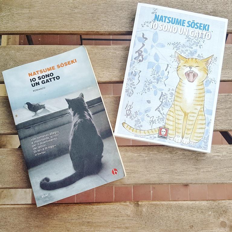 Io sono un gatto, manga e romanzo