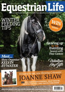 Equine portraiture by Trafford Photography on the front cover of Equestrian life