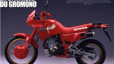 Photo of Honda NX 650 Dominator