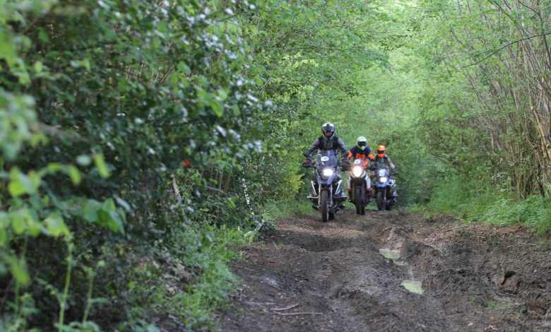 Photo of Première édition des Maxi trail In Normandie