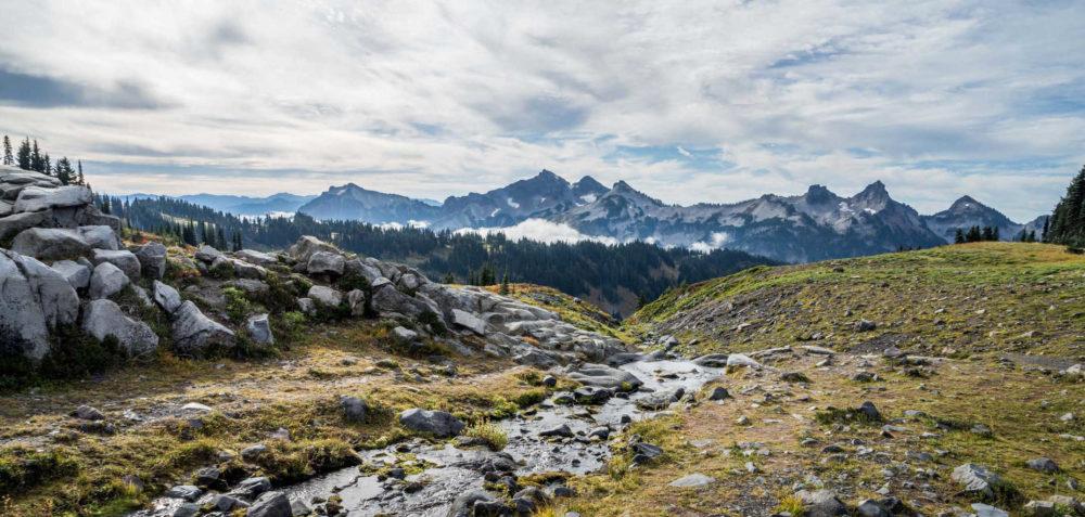 Panorama Point on Mt. Rainier