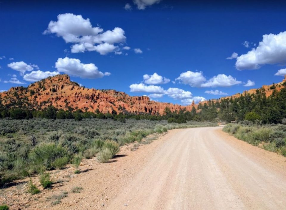 Dirt Road to Red Canyon Dixie National Forest