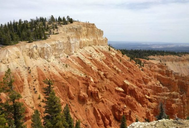 Pink Cliffs of Bryce Canyon