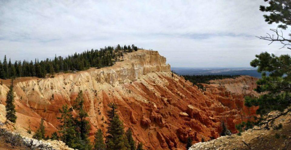 Pink Cliffs at Bristlecone Loop Trail