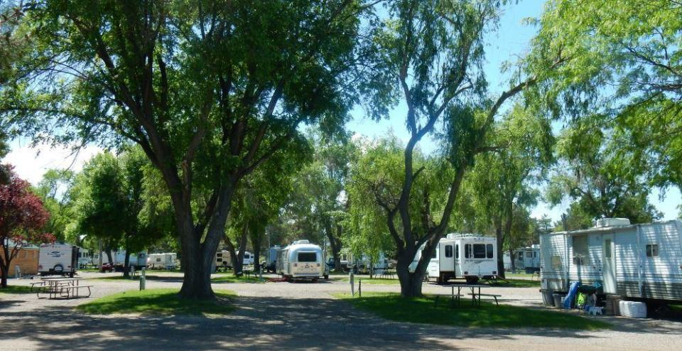 Living up to its name, Village of Trees has a lot of trees on the lot. Pretty ones at that.