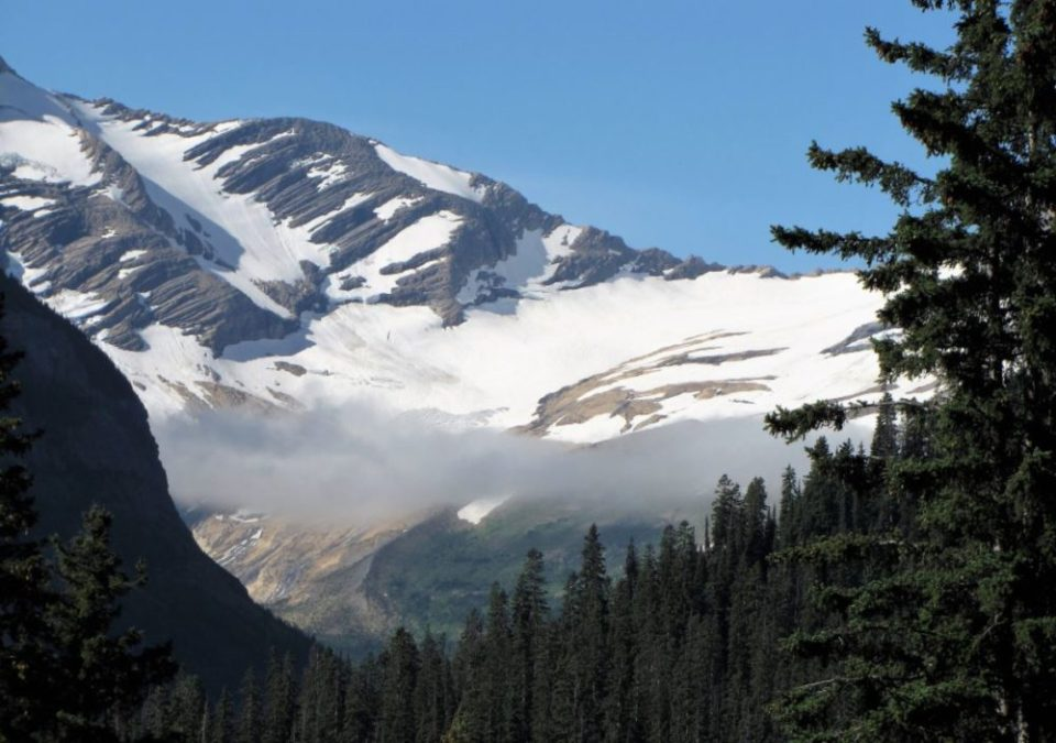 Jackson Glacier will be gone by 2030.
