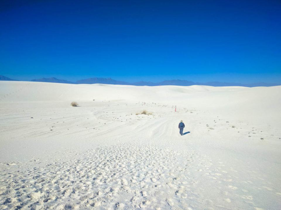 Along Alkali Flat Trail