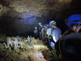 Lower Cave Wild Tour