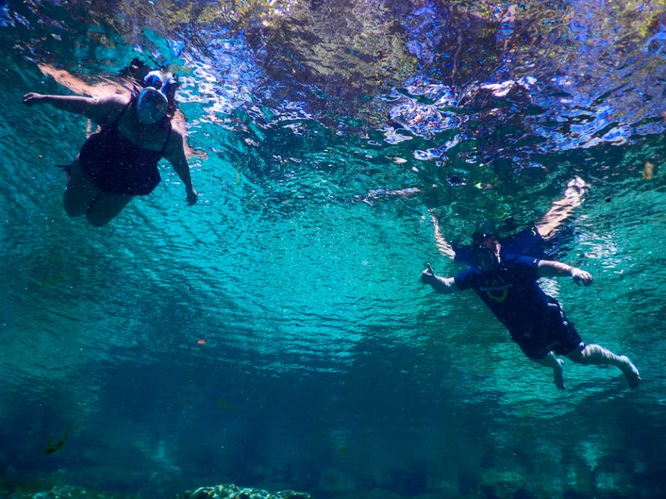 Snorkeling in the blue waters of Three Sister Spring