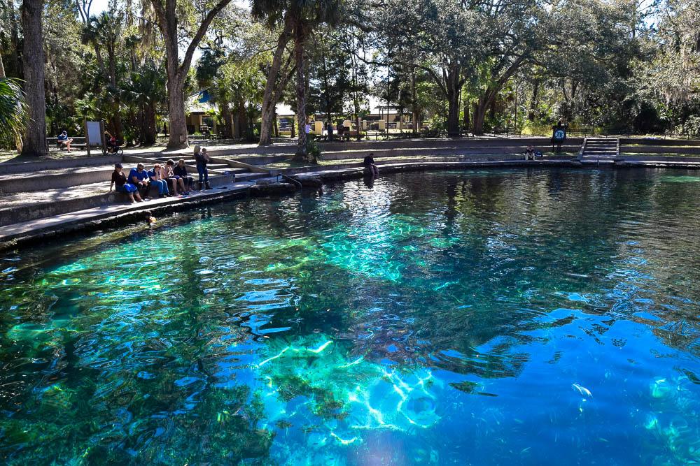 Juniper Springs offers superb swimming.