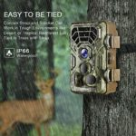 """Campark Trail Camera 14MP 1080P IP66 Waterproof Hunting Game Camera for Wildlife Monitoring with 2.4"""" LCD 120° Detecting Range Motion Activated Night Vision"""