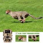 Trail Camera 14MP 1080P HD Game Hunting Camera with 3 Infrared Sensors 850nm IR LEDs Low Glow Hunting Cameras with Night Vision Waterproof IP 66 Wildlife Monitoring with 120°Detecting Range
